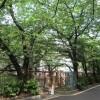 1DK Apartment to Rent in Meguro-ku Landmark