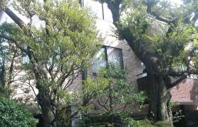 4LDK Apartment in Nishiazabu - Minato-ku