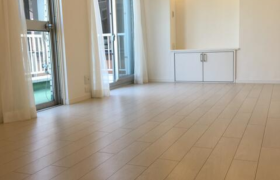 港區西麻布-3LDK公寓大廈