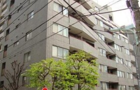 港区南麻布-3LDK{building type}