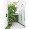 1LDK マンション 中央区 Building Entrance