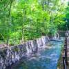 6SLDK House to Buy in Setagaya-ku Landmark