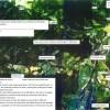 Land only Land only to Buy in Esashi-gun Hamatombetsu-cho Exterior