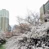 1SK Apartment to Rent in Meguro-ku Interior
