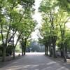 3LDK Apartment to Buy in Setagaya-ku Park