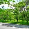 土地 土地 北佐久郡軽井沢町 View / Scenery
