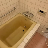 2SLDK Apartment to Rent in Setagaya-ku Bathroom