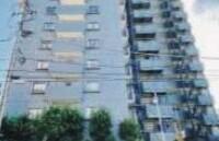 3LDK {building type} in Yotsugi - Katsushika-ku