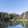 1DK マンション 文京区 公園