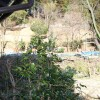 在南丹市購買5LDK 獨棟住宅的房產 花園