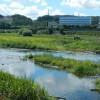 6SLDK House to Buy in Setagaya-ku Sea or River