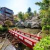 5LDK Apartment to Rent in Minato-ku Garden