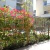 2LDK Apartment to Rent in Bunkyo-ku Balcony / Veranda