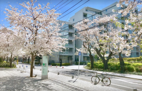 1LDK Mansion in Kinuta - Setagaya-ku