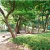 4LDK House to Buy in Shinagawa-ku Park